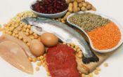 Белковая пища: польза или вред