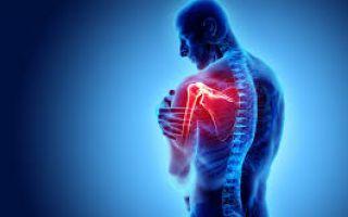 Какое спортивное питание защищает связки и суставы?