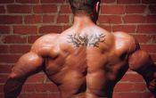 Как накачать крылья гантелями: качаем широчайшие мышцы спины