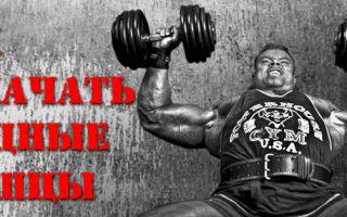 Как правильно накачать грудные мышцы и стать сильнее