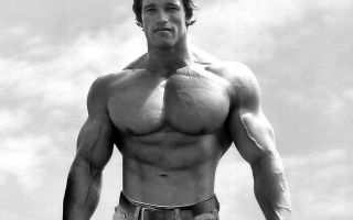 Как накачать грудные мышцы гантелями
