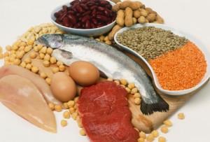 Белковая пища польза или вред