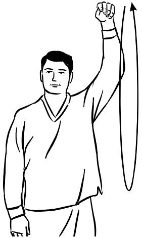 Вращение руками в плечах