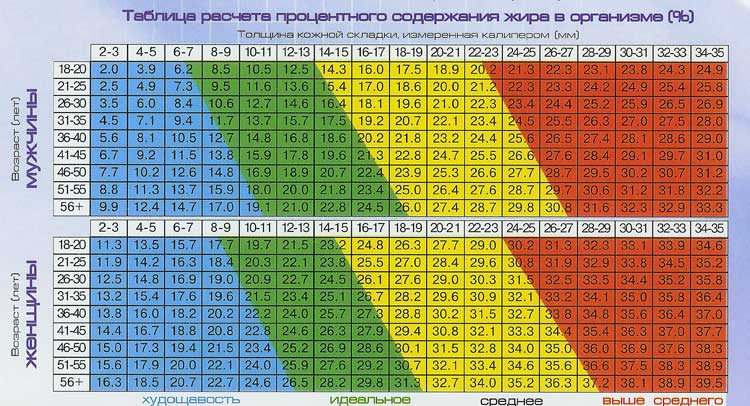 Таблица расчета процентного содержания жира в организме