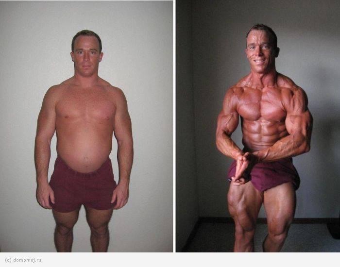Как жир превратить в мышцы